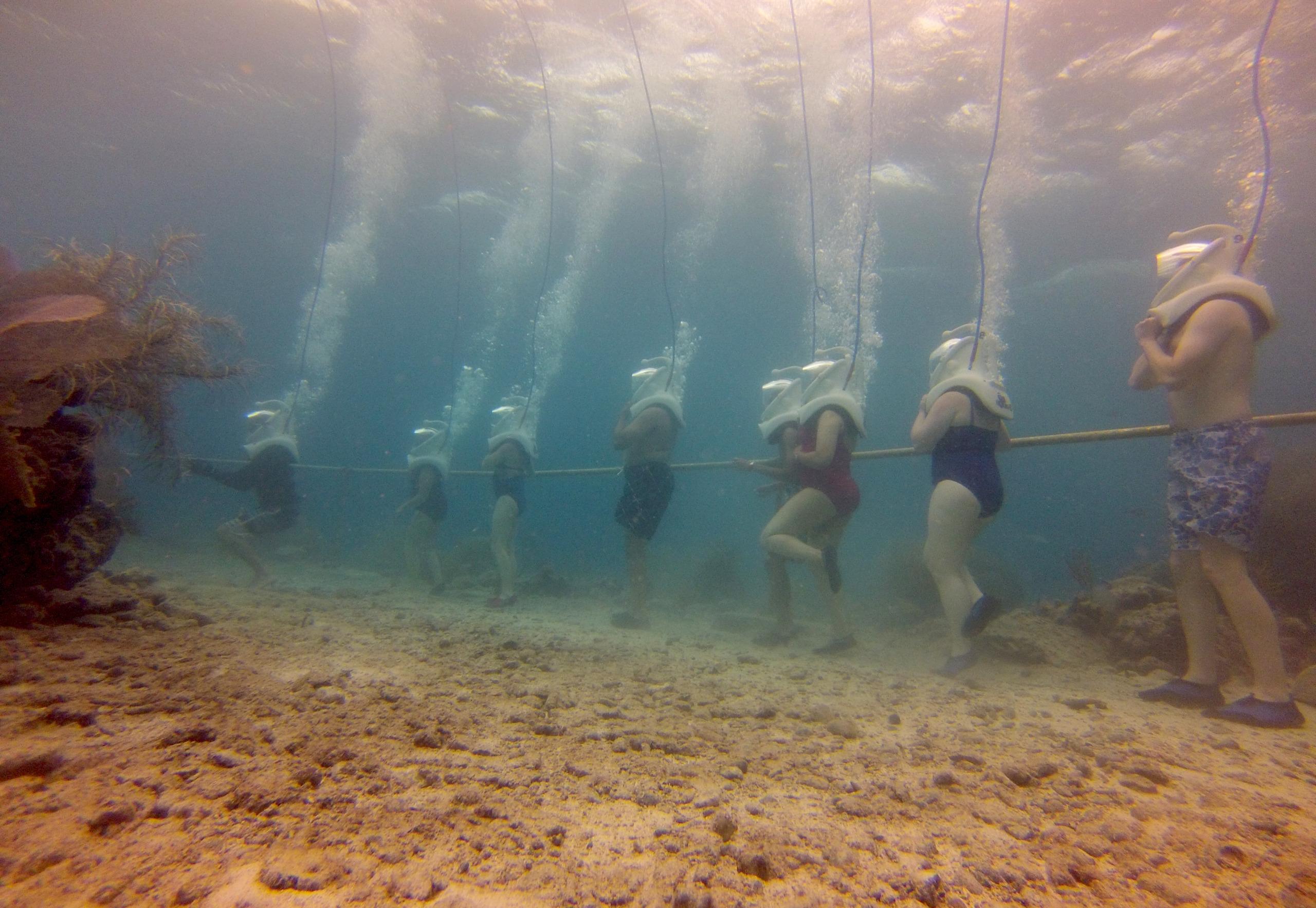 Guidance to Sea Trekking