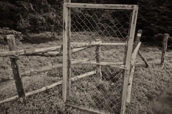 Grenze 09