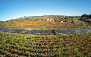 Wine Country Sustainability