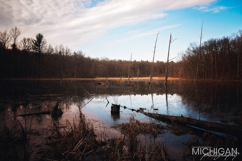 A beautful pond on Bald Mountain's trails.