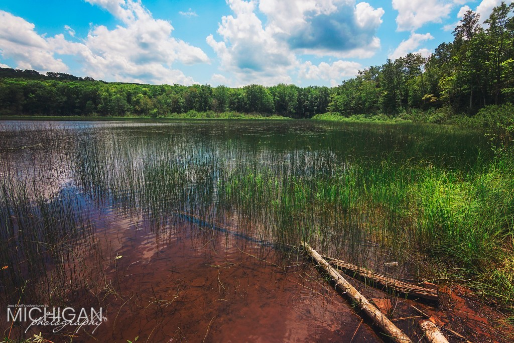"""Lake of the Clouds at """"ground level"""". Facing the Big Carp River outlet."""