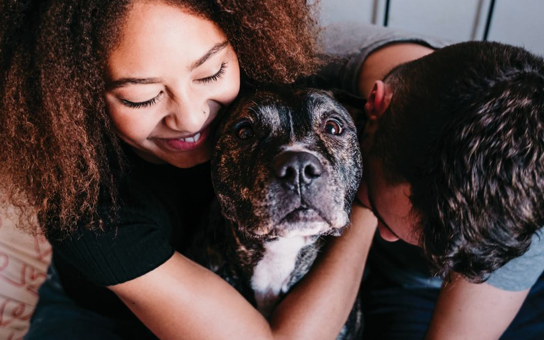 October 23 Is National Pit Bull Awareness Day