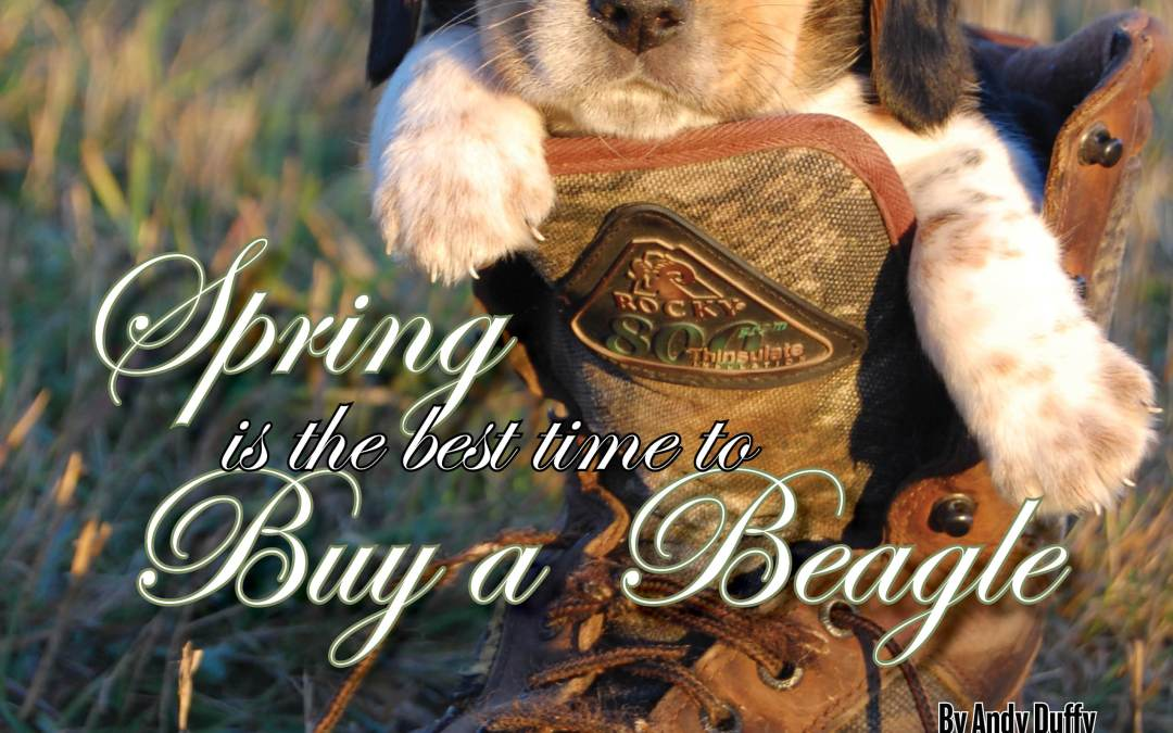 Man's best friend can be his best hunting buddy this fall