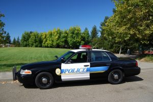 police-cruiser-1066864-m