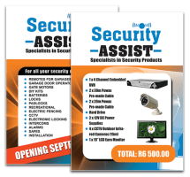 Security Assist - posters