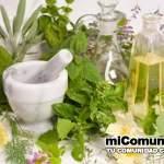 Remedios caseros y naturales para la diabetes