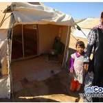 Un millón de voces en defensa de los cristianos en Oriente Medio