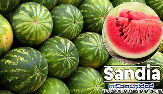 Propiedades Curativas Y Medicinales De La Sandía