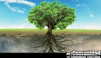¿Cuál es el significado del árbol de la vida?