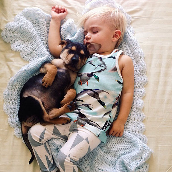 Theo-Beau-toddler-naps-with-puppy-theo-and-beau-12