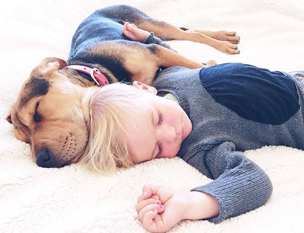 Theo-Beau-toddler-naps-with-puppy-theo-and-beau-2-17