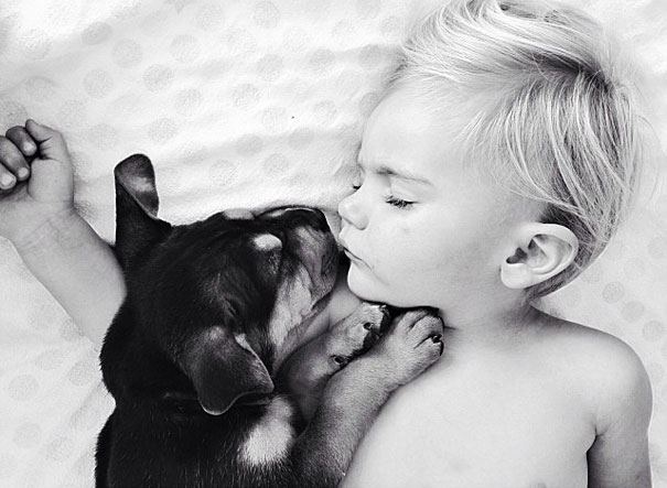 Theo-Beau-toddler-naps-with-puppy-theo-and-beau-8