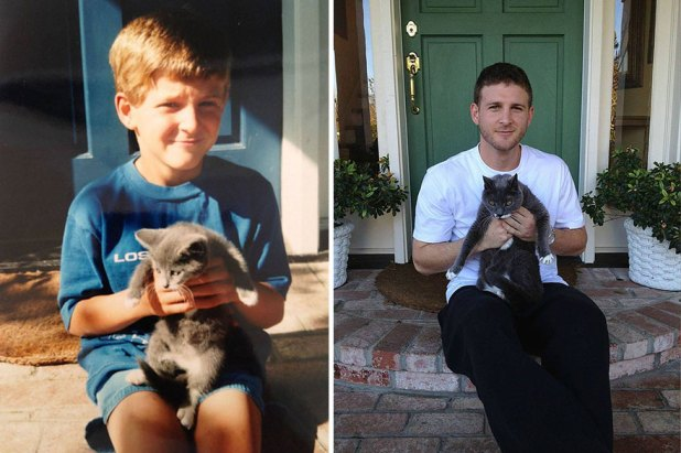gatos-creciendo-antes-despues-18