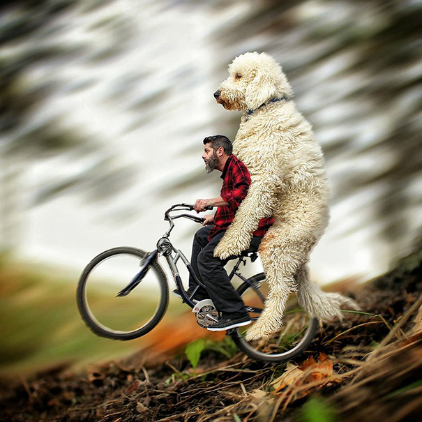 aventuras-juji-perro-gigante-photoshop-christopher-cline-14