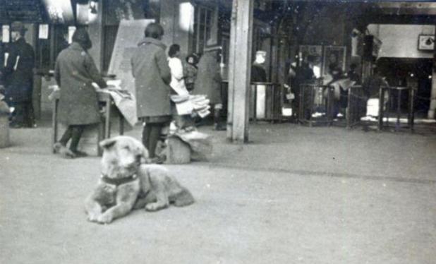 1899205_3