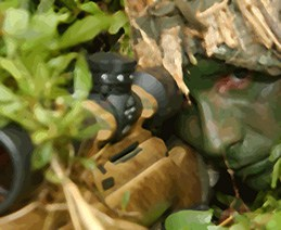 Marine sniper and gun camouflaged among greenery.