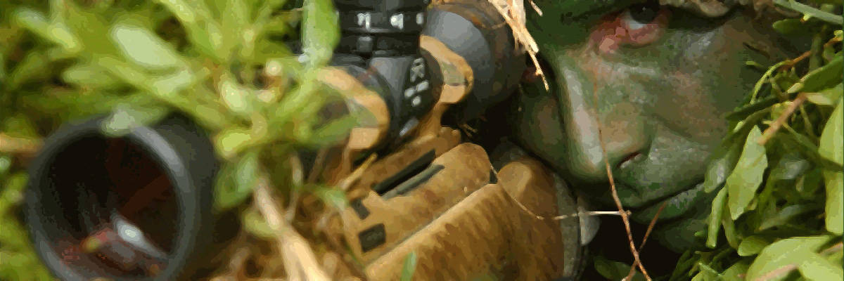 Marine sniper and rifle camouflaged in shrubbery.