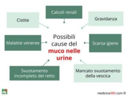 Figura 1 - Possibili cause del muco nelle urine causato anche da batteri