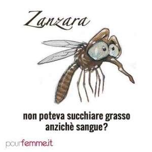 Image result for zanzare inverno