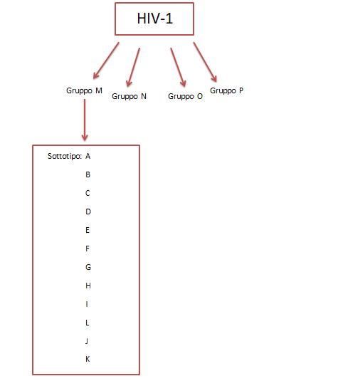 ceppi-HIV-1