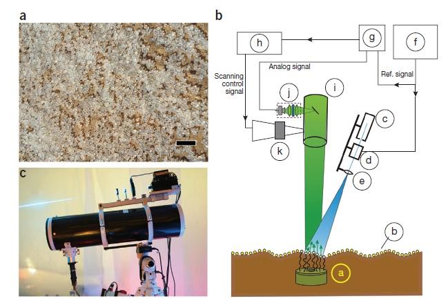 Sistema ottico di rilevazione del segnale di bioluminescenza