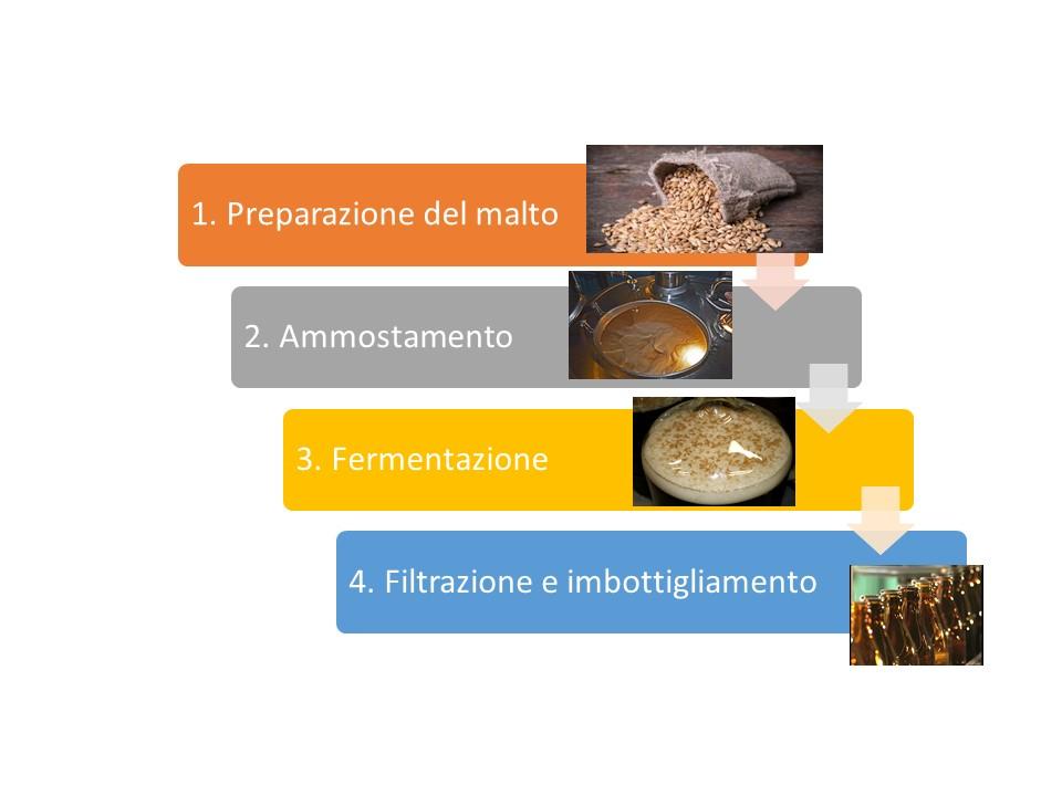 fasi di produzione della birra