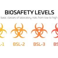 Laboratori: livelli di biosicurezza, descrizione, agenti patogeni lavorati