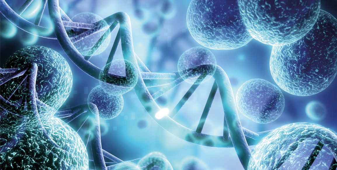 genoma batterico