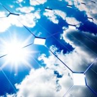 Sphingomonas solaris, la nuova specie batterica isolata sui pannelli solari di Boston