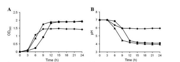 effetti del D-Tagatosio sulla crescita di S. mutans