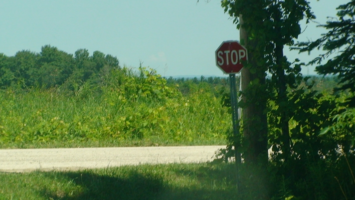 Wasaga Beach Shy Stop Sign 4