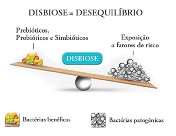 Disbiose / Desequilíbrio Intestinal -