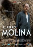 El_perro_Molina