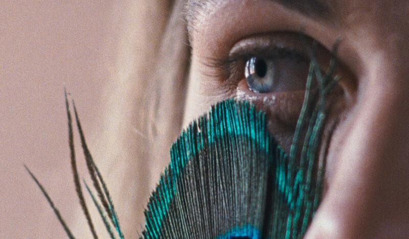 Festivales: crítica de «La metamorfosis de los pájaros», de Catarina Vasconcelos (Berlinale/San Sebastián)