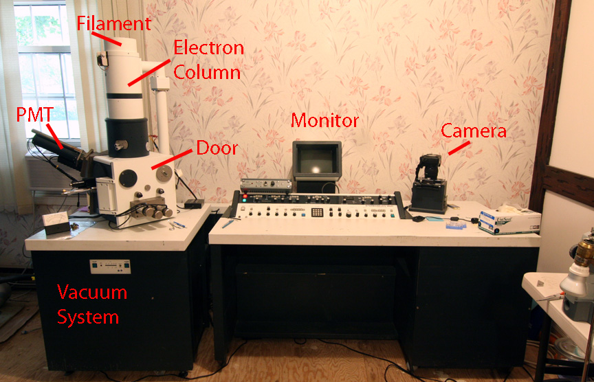 A Scanning Electron Microscope In The Dining Room