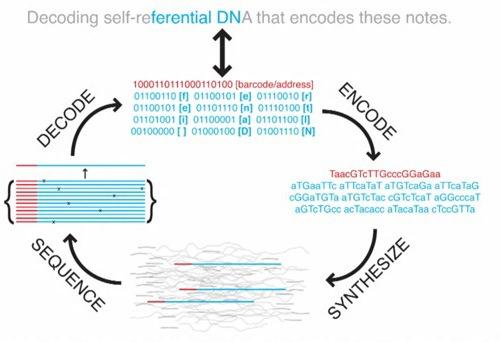 Resultado de imagen para ADN storage