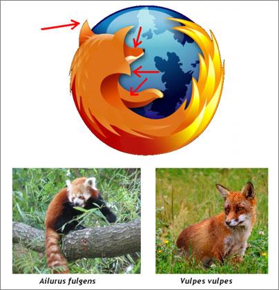Firefox-Logo-Investigacion