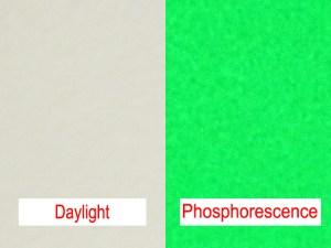 Phosphorecent Beads - Yellow Green Afterglow Spheres