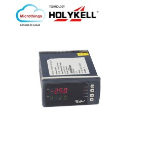 Dual Loop Digital display controller