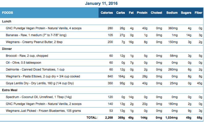 Mike's Diet Journal Entry for January 11 2016