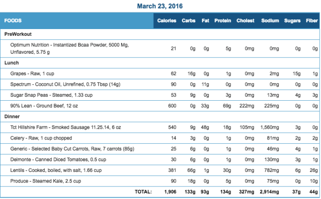 Mike's Diet Journal Entry for March 23 2016