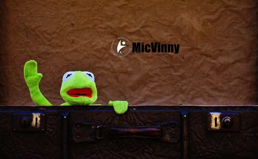 12 Portable Travel Fitness Gear You Should Always Pack, Kermit the frog coming out of a suitcase with micvinny logo.
