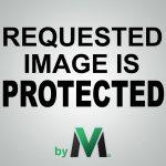 Do Not Delete, Media Vault Place-holder Image