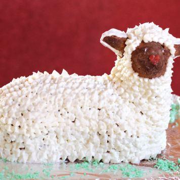 Ana's Lamb