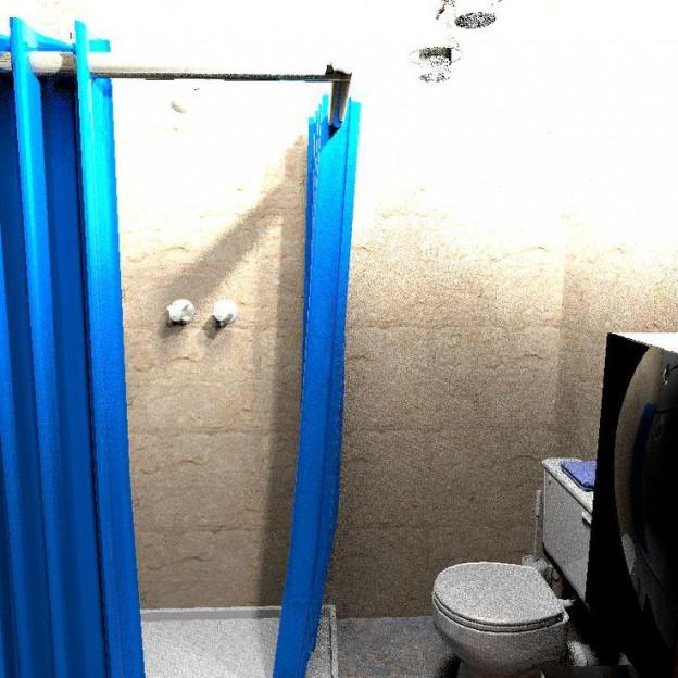 Ronnie's Tiny House Bathroom