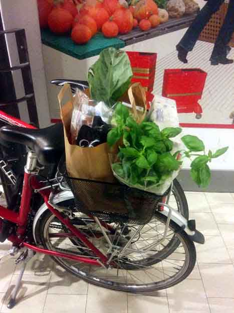 Here is a new basil plant coming home from the supermarket with me
