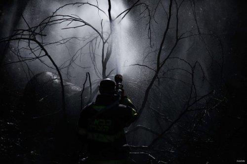 An Israeli firefighter seen in a burnt out forest on Mount Carmel area in northern Haifa, Israel on November 25, 2016 [Daniel Bar On / Anadolu Agency]
