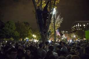 WASHINGTON, USA: People climb the trees lining Pennsylvania Avenue to get above a large crowd that has gathered in front of the White House as the results of the 2016 Presidential Elections started to become clear in Washington, USA on 9 November 2016. [Samuel Corum/Anadolu Agency]