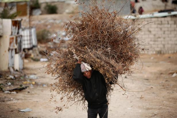 KHAN YUNIS, GAZA - DECEMBER 14: A man carries fascine in his back as cold weather affects Khan Yunis in Gaza on December 14, 2016. ( Ashraf Amra - Anadolu Agency )