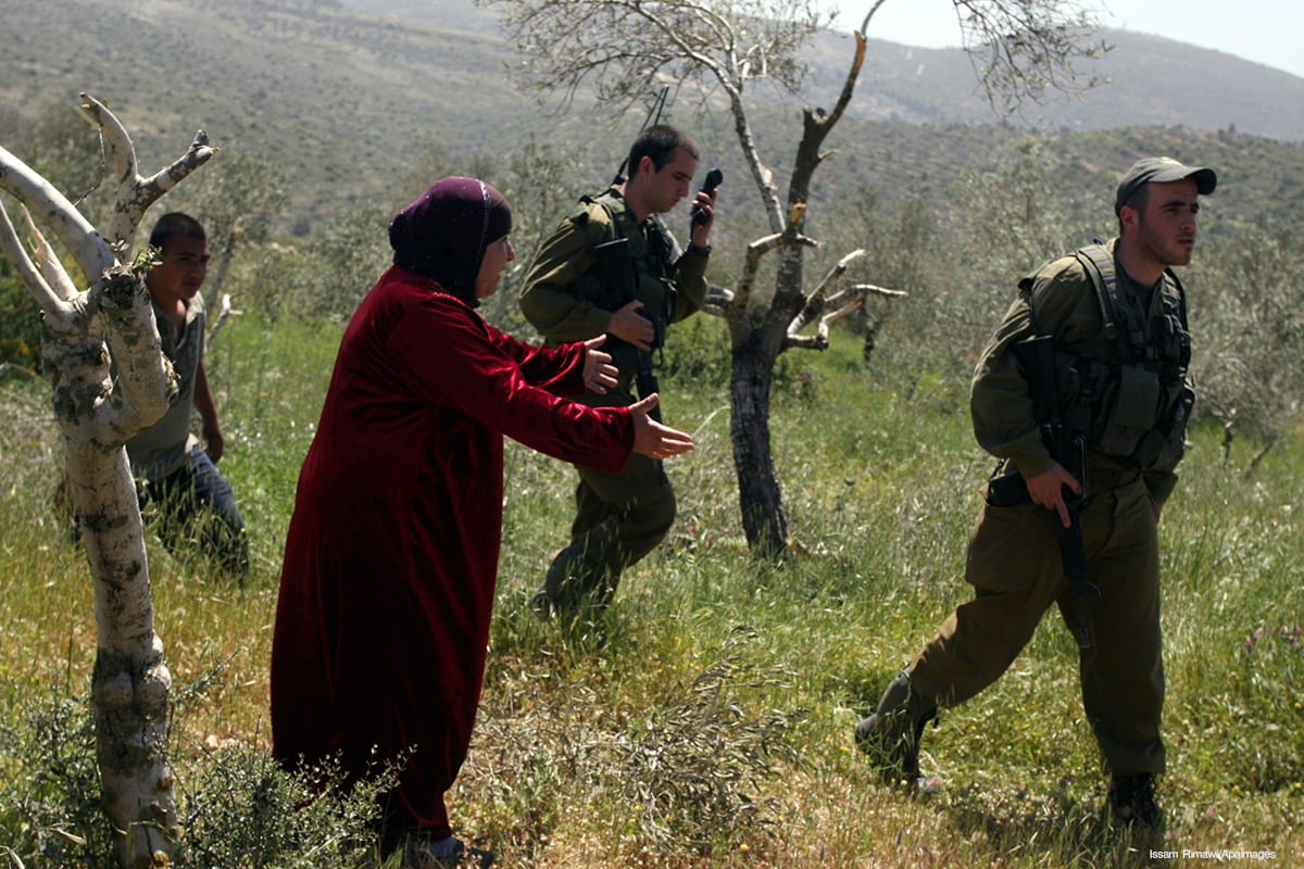 A Palestinian woman reacts to her damaged olive trees as Israeli soldiers walk past in West Bank [Issam Rimawi/Apaimages]
